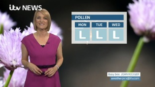 VIDEO: Sunday's pollen forecast for the North East