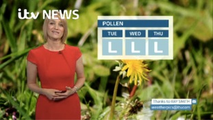 VIDEO: Monday's pollen forecast for the North East