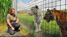 Tribute paid to keeper killed by tiger at Hamerton Zoo