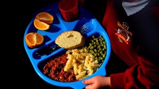 A child with a school lunch.