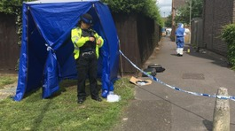 Murder investigation after brawl leads to man's death