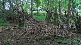 The woodland area of the school was damaged between 9am and 2pm on 20 May 2017