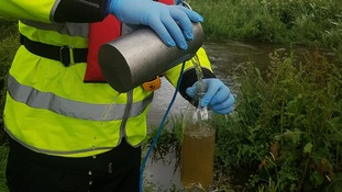 Testing river water