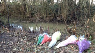 Floral tributes left at the site of a plane crash in Aldham, Suffolk