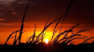 Sunset photo by Caroline Hall