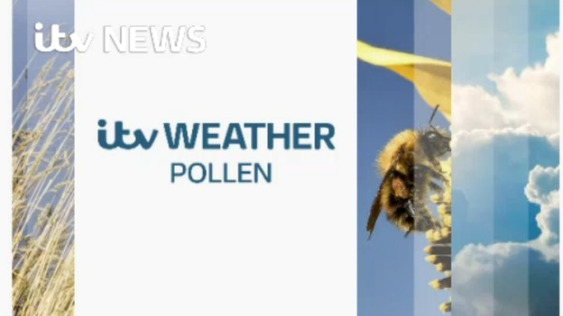 POLLEN_for_WEB_WEATHER_1706