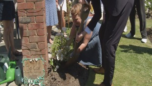 The rose bush was dedicated to Jo Cox