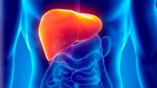 Liver disease campaign launched amid weight epidemic in North East Lincolnshire