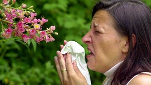 Pollen counts are currently at 'very high'.