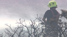firefighter putting out gorse fire