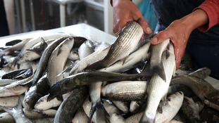 Warning after residents caught out by fishy scam