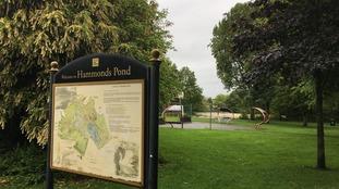 Hammonds Pond park in Carlisle