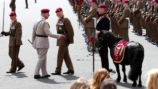 The Prince of Wales inspects the Para's mascot Pegasus on a visit to Colchester Barracks.