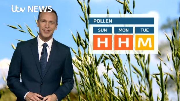Web_Pollen_24th_June