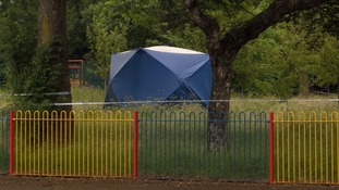 A teenage boy has been arrested on suspicion of the attempted rape of an eight-year-old girl in a park.