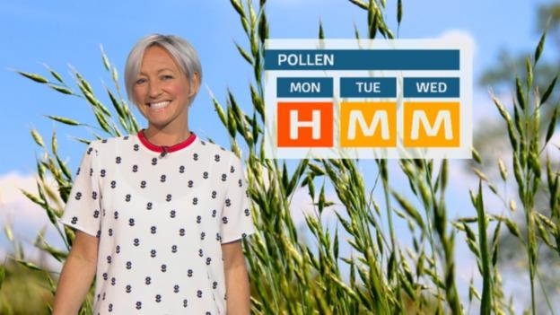 pollen_monday