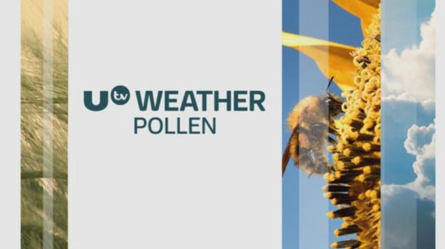 P_pollen_26062017