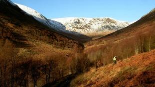 Carrifran Wildwood, Moffat Hills, Scottish Borders