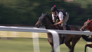 Horseracing industry worth £240m a year to Newmarket economy