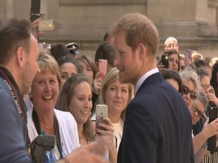 Prince Harry greets the crowds