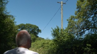 Farmer vows to cut down telephone poles in protest over slow broadband