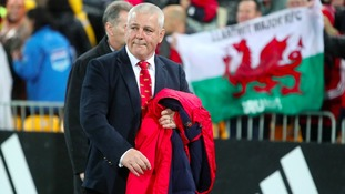 Another coach might not have drawn series, says Lions boss Warren Gatland