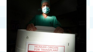 picture of organ for transplant