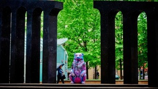 The Big Sleuth Project: Interactive map