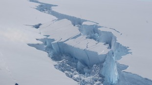 The iceberg is one of the largest on record