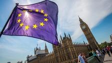 EU flag and parliament