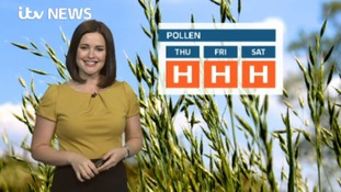 The pollen count on Wednesday