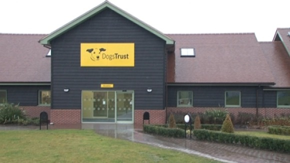 The Dogs Trust Centre in Shrewsbury