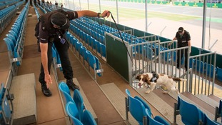 A police dog at Silverstone