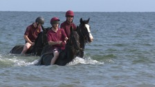 Household Cavalry make a splash on their Norfolk summer break