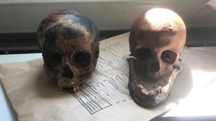 The skulls are believed to be up to 100 years old.
