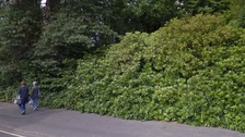 The woman fell into a ditch at Rayrigg Gardens in Windermere
