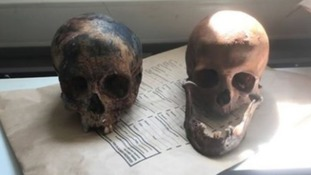 Skulls found in plastic bags will be returned to homeless man