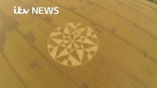 Farmers plan how to deal with 'dreaded' crop circles