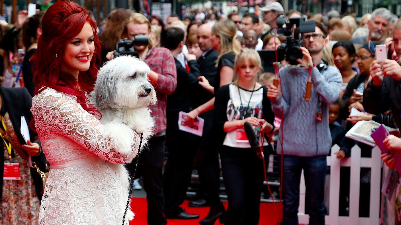 Dog Shows Northamptonshire