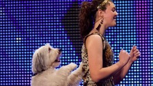 Britain's Got Talent's Pudsey dies
