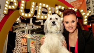 Britain's Got Talent star Pudsey the dog dies