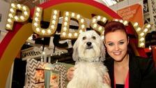 Britain's Got Talent star Pudsey the dog dies