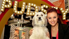 Pudsey and Ashleigh won the 2012 BGT series and went on to star in their own film.