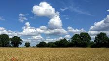 Horsford in Norfolk.