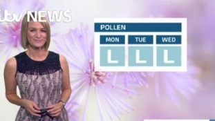Kerrie brings you Sunday's pollen report