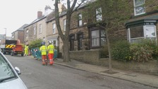 The workers had been trying to fell a tree on Mona Road in Crookes