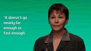 Green Party MP Caroline Lucas said the 2040 deadline and other clean plans were insufficient.