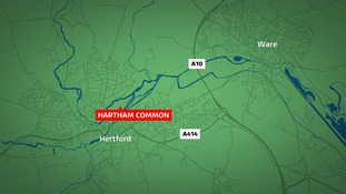 The assault happened at Hartham Common in Hertford.