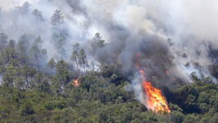 Fire tore through the forest of La Londe-les-Maures
