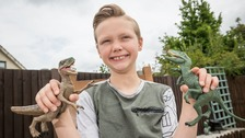 Ten-year-old boy spots mistake at Natural History Museum